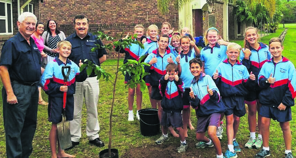 AfriForum goes GREEN