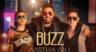 Buzz Sung by Badshah