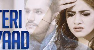 Teri Yaad Lyrics – KP Wadala