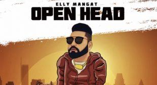 Lyrics of Open Head by Elly Mangat – LyricsBELL