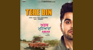 Lyrics of Tere Bin Song