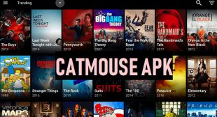CatMouse APK 2020 – Download CatMouse APK HD English Movies, Latest CatMouse APK Movies
